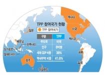 환태평양경제동반자협정(TPP)의 쟁점과 전략